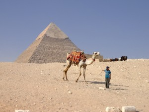 Cairo 2013